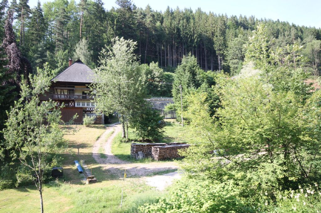 Haus/Wald Immopoint Singler
